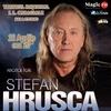 Stefan Hrusca: A Tree in Bloom