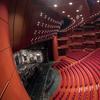 Teatrul Național București suspendă spectacolele programate!